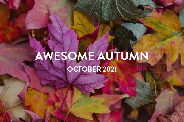 October 2021 NSLS Newsletter