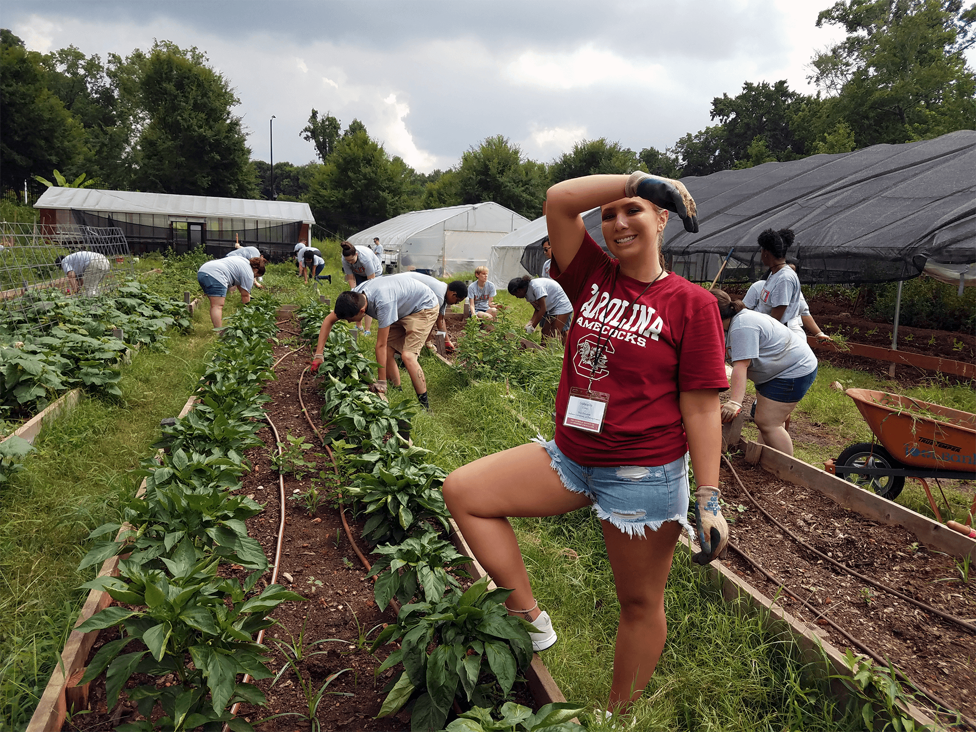 NSLS volunteers doing urban gardening